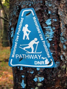 dnr-pathway.jpg
