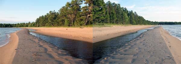 shorelinedreams.jpg