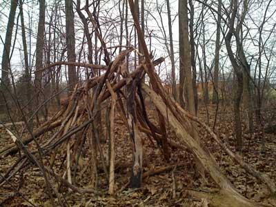 woodsfort