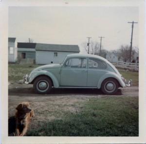 1965vwtigger