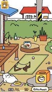 catyard